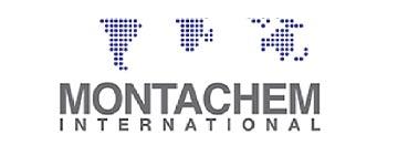Logo polimero